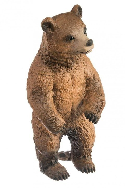 Niedźwiedzica Grizzly